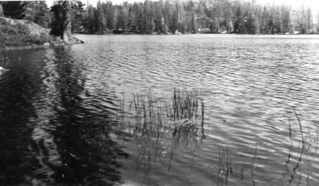 BuckIsland1953