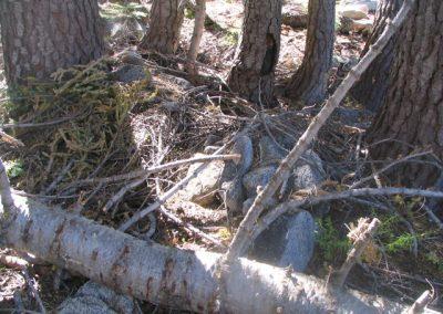 mountainmeadowcabinruinsoct62005007