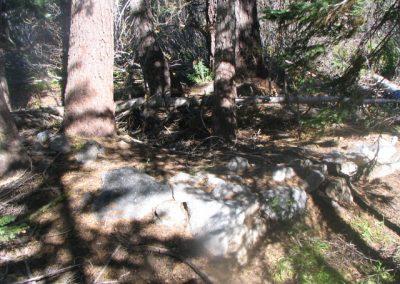 mountainmeadowcabinruinsoct62005011[1]
