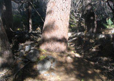 mountainmeadowcabinruinsoct62005012