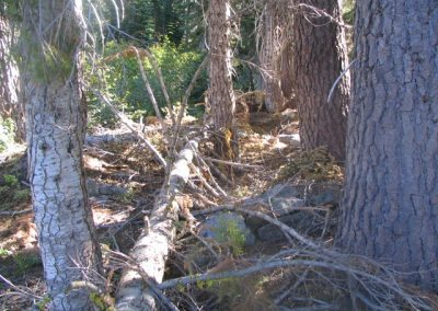 mountainmeadowcabinruinsoct62005015