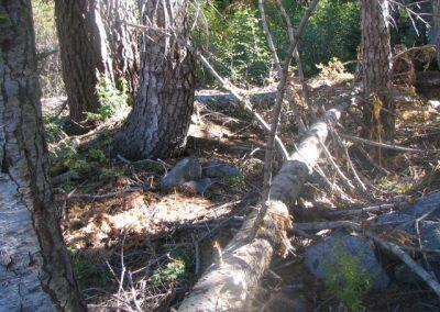 mountainmeadowcabinruinsoct62005017